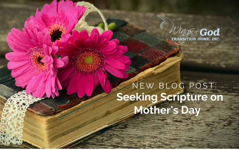 Seeking Scripture on Mother's Day